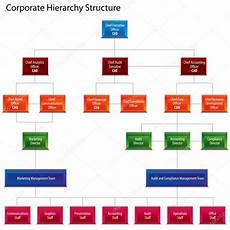 Hierarchy Chart By Akvelon Corporate Hierarchy Structure Chart Stock Vector