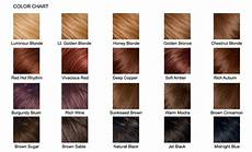 Pravana Hair Color Chart Pravana Hair Color Chart Hair Color Chart