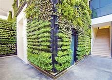 Vertical Green Green Wall Systems Vertical Garden Landscaping Services
