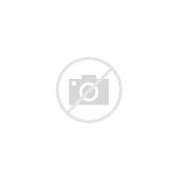 Image result for Cool iPhone 5C Cases
