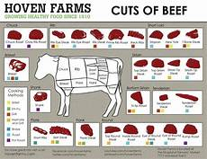 Beef Cuts Chart Poster Cuts Of Beef Chart 18 Quot X28 Quot 45cm 70cm Poster