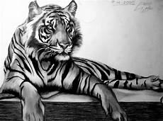Malvorlagen Tiger Woods 106 Besten Coloring Tigers Bilder Auf Katzen