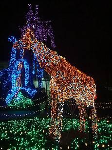 Brookside Gardens Lights Hours Garden Of Lights Brookside Gardens Garden Of Lights