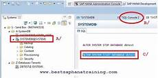 Start Database How To Start Amp Stop Sap Hana Tenant Database