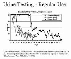 Marijuana Detection Chart Marijuana Detection Times And Urine Drug Tests The Weed