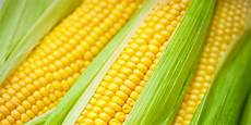 What Is Corn Made Of Is Corn A Grain Yes And It S Also A Fruit And A Vegetable