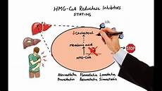 Statin Mechanism Of Action Pharmacology Drugs For Hyperlipidemia Made Easy Youtube