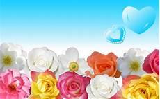Flower Wallpaper For Laptop by Desktop Flowers Hd Backgrounds