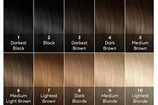 Smartstyle Hair Color Chart Diy Hair High Lift Hair Color Guide Bellatory