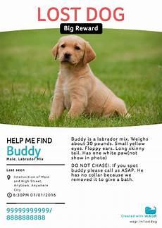Lost Dog Poster Maker Wagr Lost Amp Found Dog Poster Creator