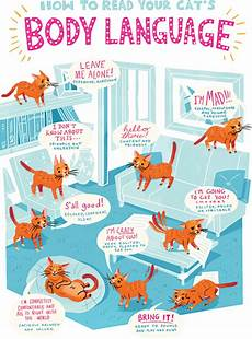 Cat Behavior Chart How To Speak Your Cat S Language Healthy Paws