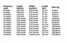 Womb Baby Weight Chart In Kg 10 Free Ms Word Baby Weight Chart Template Download