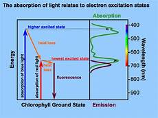 What Does Light Energy Mean Light