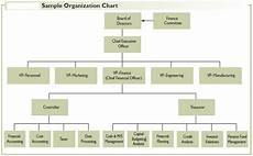 Bdo Organizational Chart Organization Of The Financial Management Function In