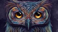 Colorful Owl Art Owl Colorful Art 5k Hd Artist 4k Wallpapers Images