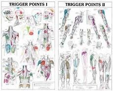 Travell Trigger Point Chart Two Part Trigger Point Chart Set Australian