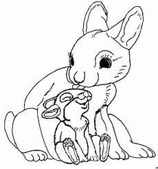 Hase Malvorlage Kinder Hase Mit Baby Ausmalbild Malvorlage Gemischt