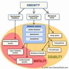 Overweight Diet Chart Obesity Flow Chart Metabolic Syndrome Hcg Diet Sleep Apnea