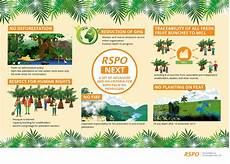 Rsp Po Certification Standards For Sustainable Palm Oil