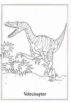 Lustige Dino Ausmalbilder Ausmalbild Dinosaurier 2 Velociraptor Auf N De