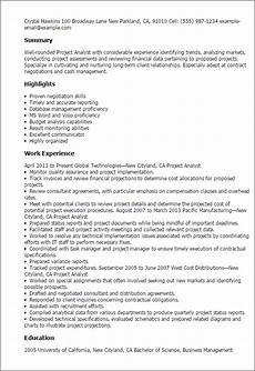 Project Analyst Resume Sample Project Analyst Resume Template Best Design Amp Tips