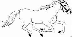 Malvorlage Pferd Gratis Pferd Rennt 2 Ausmalbild Malvorlage Tiere
