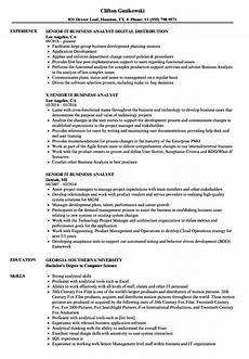 Business System Analyst Resume Senior Business Analyst Resume Mt Home Arts