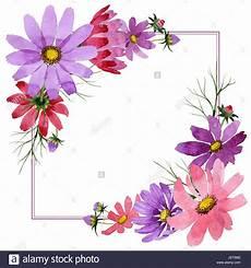 cornice di fiori disegni di cornici di fiori da colorare cerca con