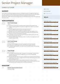 Project Management Resume Samples Project Manager Resume Samples And Templates Visualcv