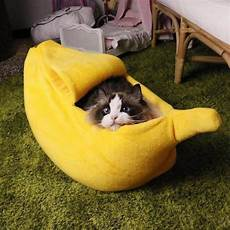 sold out cat banana bed