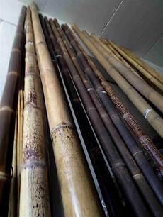stuoie di canne arelle in bamb arelle di bambu canne di bamboo stuoie