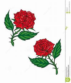 two roses stock vector illustration of plant