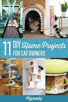 11 creative cat diy home projects for cat diy