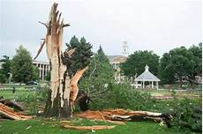 Lighting Fort Collins Lightning Destroys Tree At Colorado State University