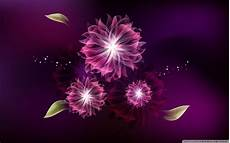 floral abstract 4k wallpaper abstract flowers ultra hd desktop background wallpaper for