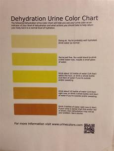Dehydration Chart Dehydration Urine Color Chart At Work Mildlyinteresting