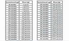 28 Weeks Baby Weight In Kg Chart Baby Weight During Pregnancy Healtheozhealtheoz
