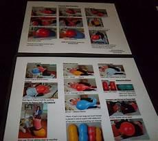 Peanut Ball Chart Original Peanut Ball 8 X 10 Chart Premier