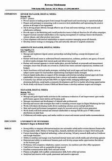 Digital Media Resume Manager Digital Media Resume Samples Velvet Jobs