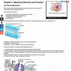 Membrane Structure And Function General Biology Pearltrees