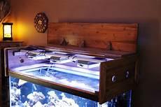 Aquarium Canopy Lights Building A Aquarium Canopy Reef Aquarium