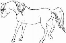 pferde 27 malvorlagen xl