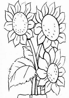 Blumen Malvorlagen Kostenlos Zum Ausdrucken Pdf Malvorlagen Kostenlos Blumen