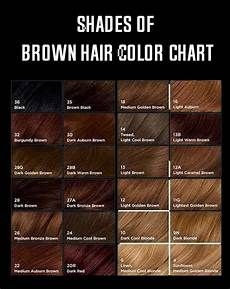 Different Shades Of Brown Hair Colour Chart Shades Of Brown Hair Color