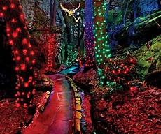 Darden Tn Christmas Lights Create New Family Traditions This Holiday Season