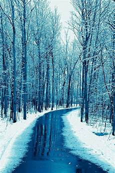 Iphone Wallpaper Hd Snow by Forest Road Wallpaper Snow Winter Iphone Wallpaper In