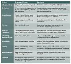 Respiratory Disease Fact Chart Quizlet Bestseller Chapter 10 Worksheet Tissue Response To Injury