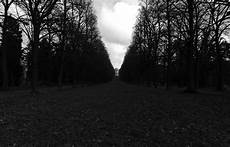 Black And White Widescreen Black And White Park Germany Monochrome Wallpapers