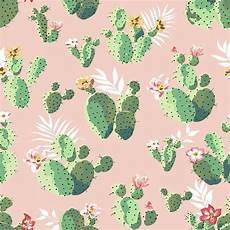 iphone 7 cactus wallpaper cacti on pink removable peel and stick wallpaper