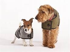 cool coats for dogs wood blazer wool coat grey the paws pet supplies